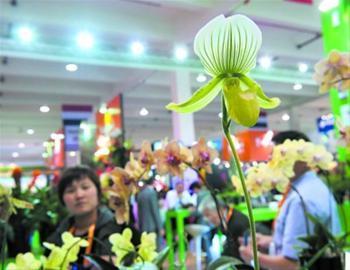 2017国际家庭花卉园艺展览会在常开幕