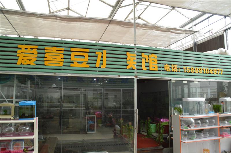 爱喜豆水族馆