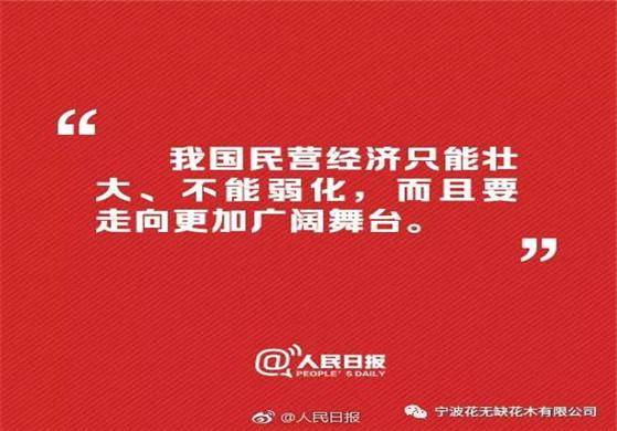 学习习近平谈民营经济的精神